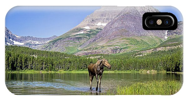 Land Of The Moose IPhone Case