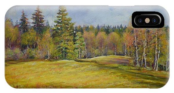 Landscape From Pyhajarvi IPhone Case