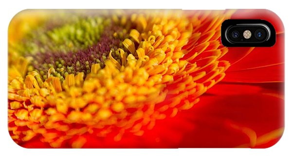 Landscape Of A Flower IPhone Case