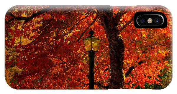 Lantern In Autumn IPhone Case
