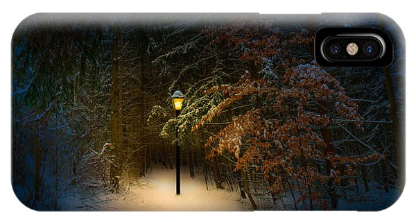 Lantern In The Wood IPhone Case
