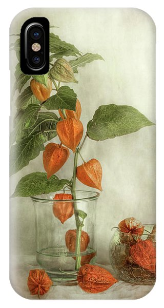 Fall Flowers iPhone Case - Lanterns by Mandy Disher