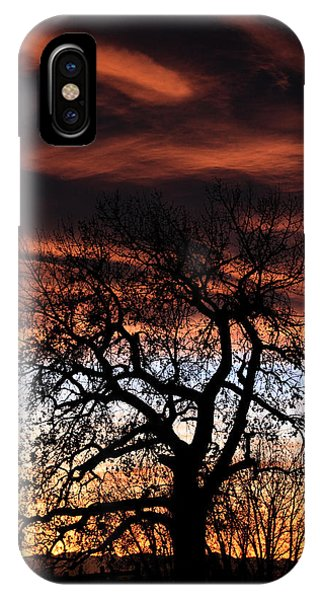 Large Cottonwood At Sunset IPhone Case