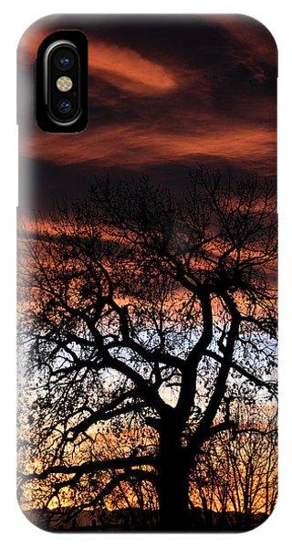 Large Cottonwood At Sunset IPhone Case