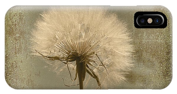 Large Dandelion IPhone Case