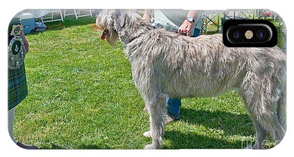 Large Irish Wolfhound Dog  IPhone Case