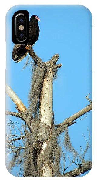 Larry Buzzard Vulture IPhone Case