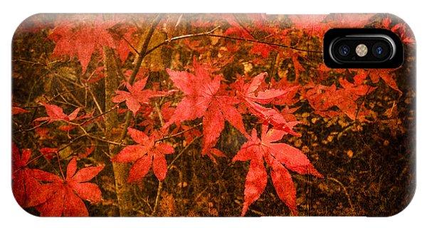 Last Color Of Autumn IPhone Case