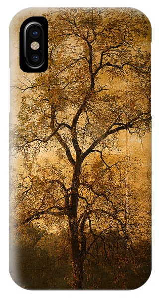 Last Fall IPhone Case