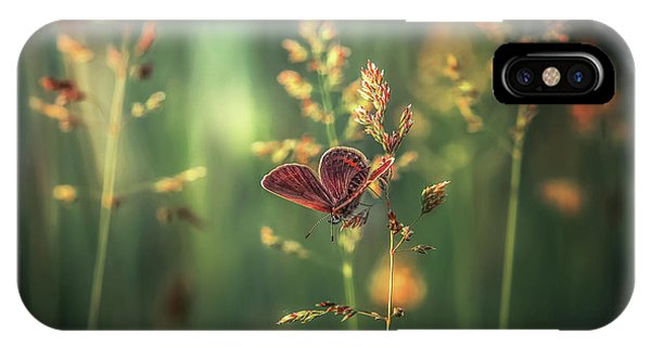 Macro iPhone Case - Last Light by Florentin Vinogradof