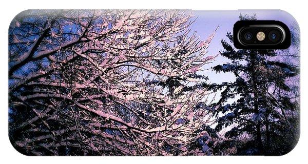 Last Peek Of Winter Sun IPhone Case