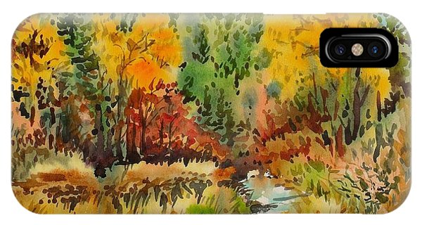 Latah Creek Fall Colors IPhone Case