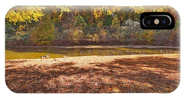 Late Afternoon Autumn Sunshine At The Lake IPhone Case