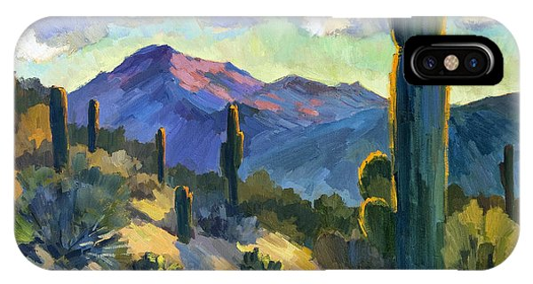 Cactus iPhone Case - Late Afternoon Tucson by Diane McClary