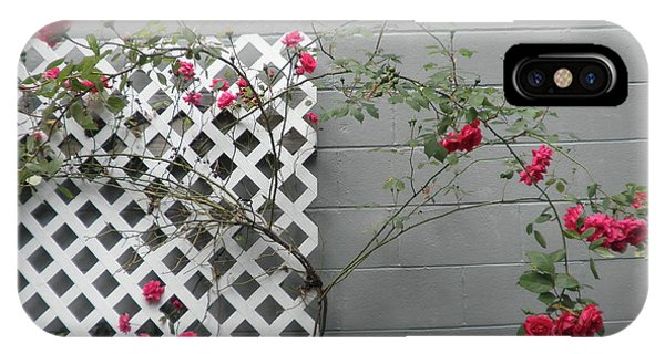 Lattice Smell The Roses IPhone Case