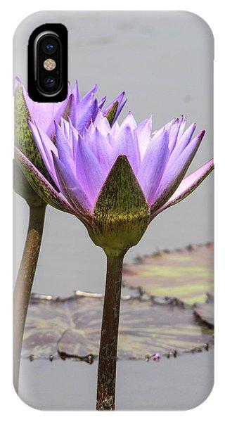 Lavendar Waterlily Phone Case by Jill Bell