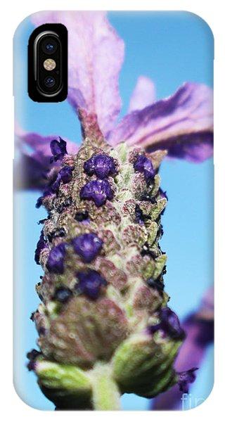 Lavender Sky Phone Case by Rebecca Christine Cardenas