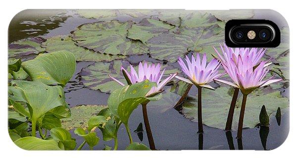 Lavender Waterlilies IPhone Case