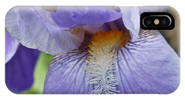 Lavish Iris IPhone Case