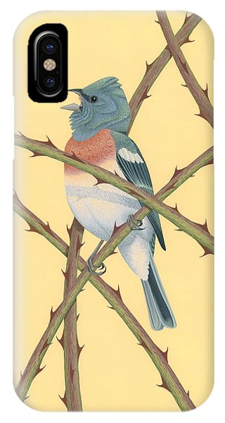 Bunting iPhone Case - Lazuli Bunting by Nathan Marcy