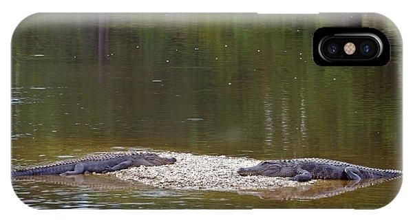 Lazy Alligators IPhone Case
