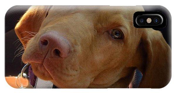 Lazy Dazy Dog IPhone Case