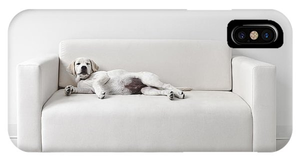 Yellow Lab iPhone Case - Lazy Dog On The Sofa by Diane Diederich
