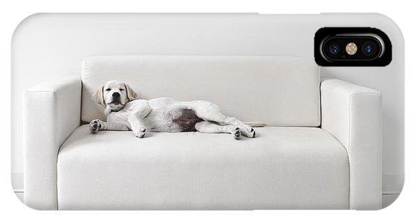 Lazy Dog On The Sofa IPhone Case