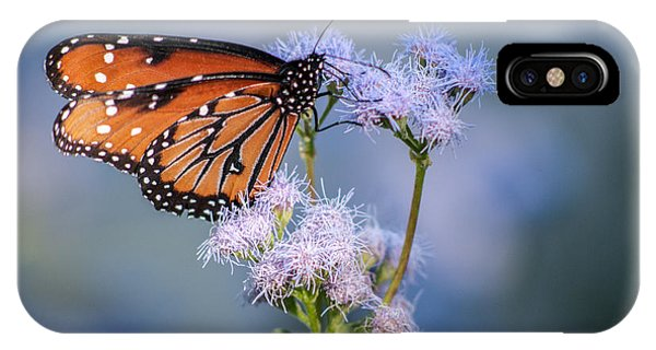 8x10 Metal - Queen Butterfly IPhone Case