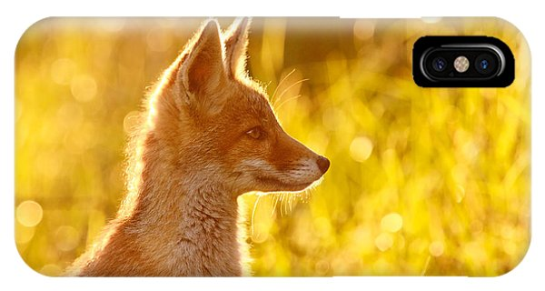 Le P'tit Renard IPhone Case
