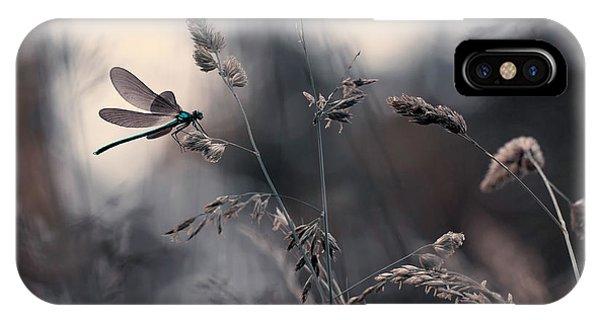 Grass iPhone Case - Le Vent L'emportera by Fabien Bravin