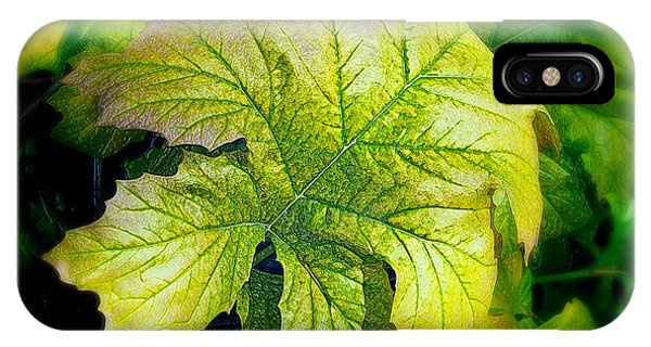 Leaf Abstract 002 IPhone Case