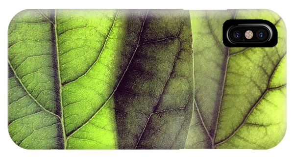 Green iPhone Case - Leaf Abstract by Christy Beckwith