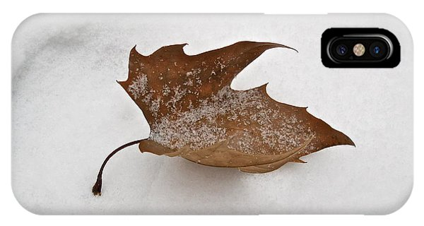 Leaf After The Snowstorm IPhone Case
