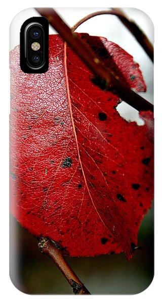 Leaf Phone Case by Arsen Arsovski