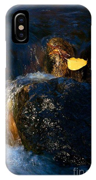 Leaf Bridge Two Phone Case by Vinnie Oakes