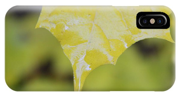 Leaf Drops Phone Case by Dorothy Hall