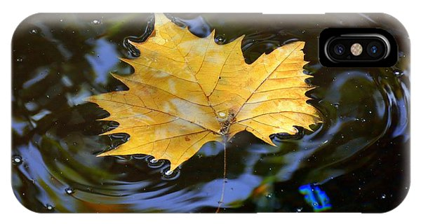 Leaf In Pond IPhone Case