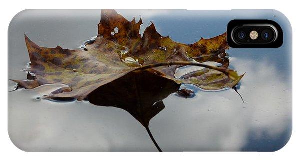Leaf In Sky IPhone Case