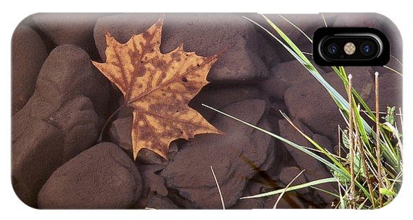 Leaf In The Mountain Fork River IPhone Case