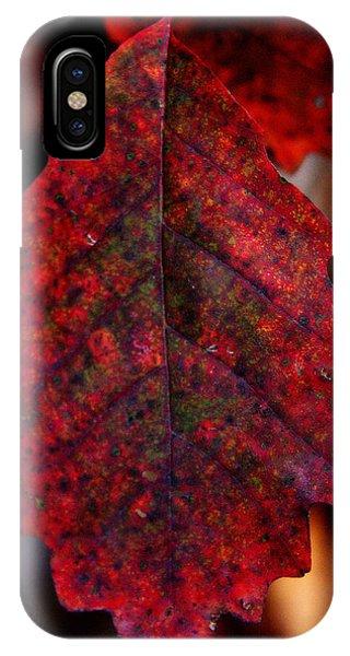 Leaf Like IPhone Case