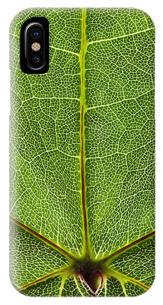 Leaf Lines Ix Phone Case by Natalie Kinnear