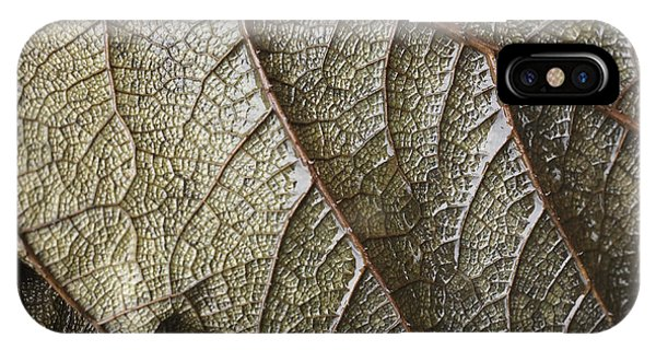 Leaf Vein Abstract IPhone Case