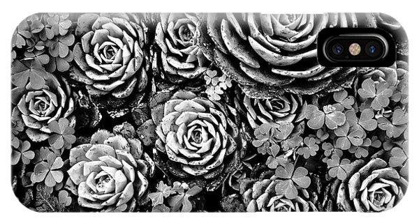 Succulent iPhone Case - Leaves And Succulents by James Brunker
