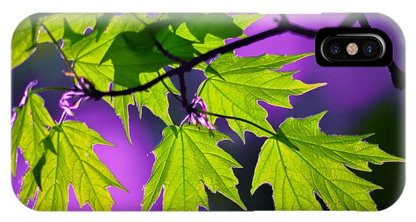Leaves Of Eve IPhone Case