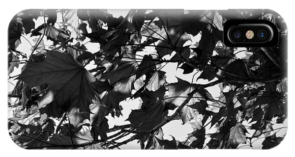 Leaves On A Tree Ll IPhone Case