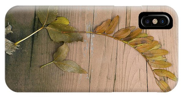 Leaves On A Wooden Step IPhone Case