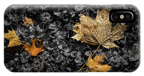 Maple Leaf Art iPhone Case - Leaves On Forest Floor by Tom Mc Nemar