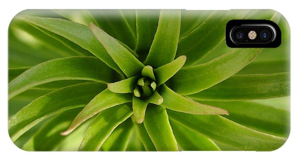 Leaves Spiral IPhone Case