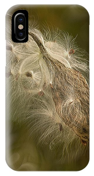 Digital Effect iPhone Case - Left To The Wind by Jack Zulli